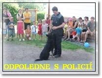 Odpoledne s policií